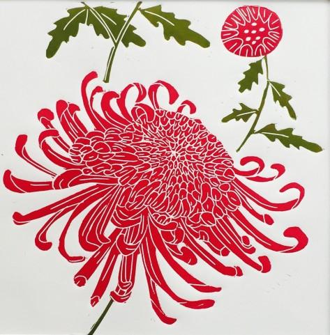 Spider Mum chrysanthemum