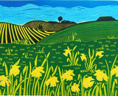Downland Daffodils